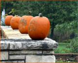 Pumpkins on the Wall