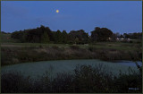 Moon Over the Gardens