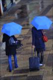 Rainy Friday.jpg