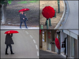 Story of a Red Umbrella in the wind and rain.jpg