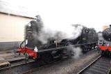 44422 in steam.