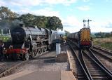 45231 and Diesel.