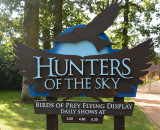 Hunters of the sky.