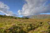 Beinn Eighe - National Nature Reserve 2.
