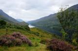 Loch Leven- Heather.
