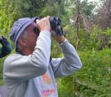 Birding in Wisconsin