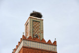 Stork nest on the minaret, Mosquée Sidi Senoussi