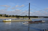 Düsseldorf - Rheinradweg