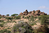 A little over an hour from Hargeisa, turn off National Highway 1 to visit Somaliland's greatest archeological site, Laas Geel