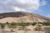 Coastal bushland giving way to rocky hills