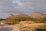 Evening light crossing a wadi in the foothills