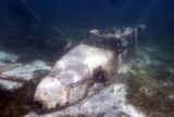 Snorkelling Coco Cay Bahamas