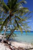 TahitiOct13 2255.jpg