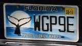 Miami Feb14 035.jpg