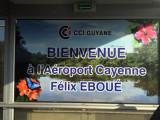 FrenchGuiana Oct15 0824.jpg