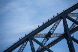 Bridgeclimbers on Sydney Harbour Bridge