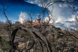Barrenjoey lighthouse with burnt tree