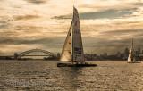 Yachts on Sydney Harbour with Bridge backdrop