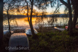 Boats on shore at Narrabeen Lake at sunset