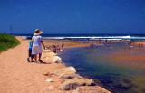 Summer at Narrabeen Lagoon