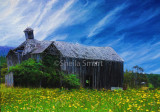 Derelict barn sits amongst flowers