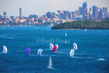 Sydney Harbour yacht race