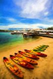 Manly kayaks