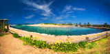 Narrabeen panorama with daisies