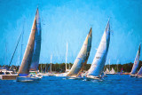 Yachts racing on Pittwater