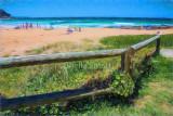 Whale Beach fence