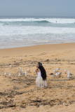 Girl with long black hair feeding gulls on beach