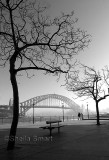 Misty winter's morning at Sydney Harbour