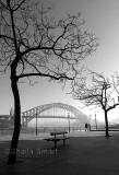 Misty winter's morning at Sydney Harbour