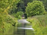 Flooded dike trail