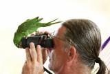 Shush birdwatching with Marc