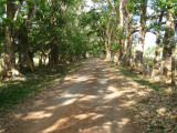 Walk along driveway to benab