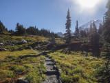 Spray Park on Mt. Rainier