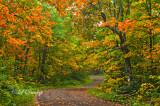 ** 86.31 - Sawtooth Mountains:  Honeymoon Trail Curve, Mid Fall