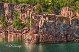 49.33 - Lake Superior: Seagull On Shoreline Rock
