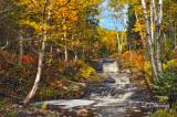 76.12 - Schroeder:  Last Creek, Gold Season