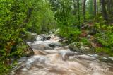 ** 4.3 - Duluth Parks:  Tischer Creek In Spring