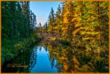 85.1 - Sawbill Trail: Early Autumn Tamarack Reflections, Swanson Creek