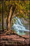** 16.3 -  Gooseberry River Middle Falls: Parrish