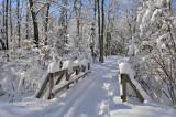 Winter:  Pattison Park Ski Trail