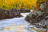 73.7 - Temperance River Gold