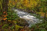 84.9 - Tait River, Autumn 2016