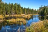 * 105.82 - Gunflint Trail:  Beaver's Pond