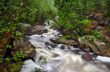 ** 4.2 - Duluth Parks: Tischer Creek Below High Falls