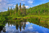 105 - Baptism River:  Reflections