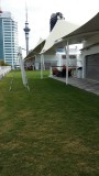 Grassy area on the Solstice
